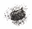 Norit_Activated_Carbon_PAC.jpg